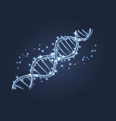 Dna code structure icon vector
