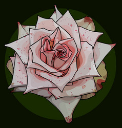 Painted bud of acicular rose in pink speckled vector