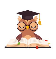 wise brown owl in graduation cap cute bird vector image