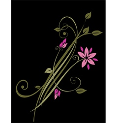 Beautiful abstract floral background vector image vector image