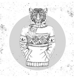 retro hipster animal tiger dressed in pullover vector image vector image