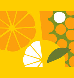 abstract orange fruit design in flat cut out style vector image