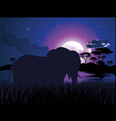 african night with elephant vector image