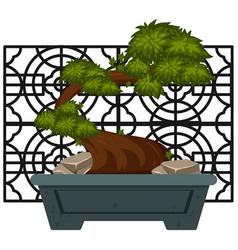 Bonsai in clay pot vector
