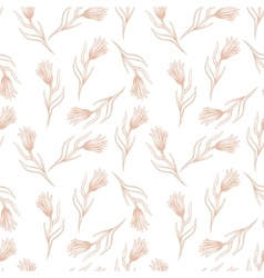Cornflower seamless pattern vector