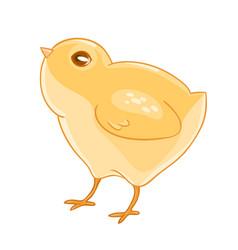 Cute cartoon yellow chicken vector