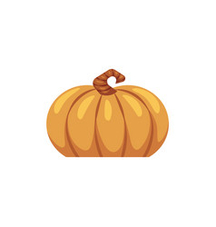 flat pumpkin icon symbol of thanksgiving vector image