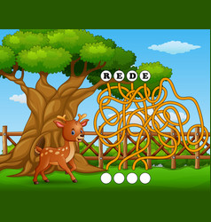 Game deer maze find way to the word vector