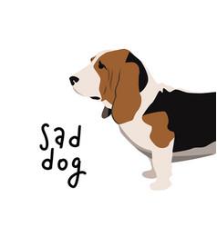 Sad dog basset hound simple vector