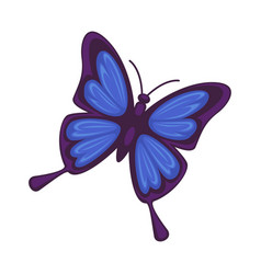 blue butterfly isolated on white background vector image
