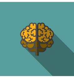 Flat Human Brain with Long Shadow vector image