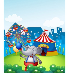 An elephant with balloons in front of a carnival vector