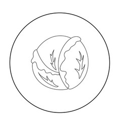 Cabbage icon outline singe vegetables icon from vector