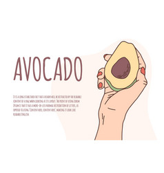 Caucasian hand holds a avocado on an isolated vector