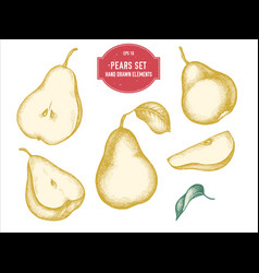 collection hand drawn pastel pears vector image