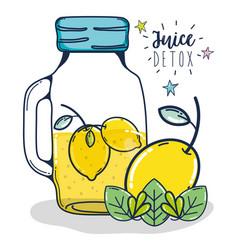 Fruit juice detox vector