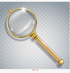 Magnifier gold search vector
