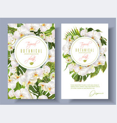 Orchid green white banners vector