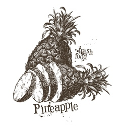 pineapple logo design template fruit or vector image