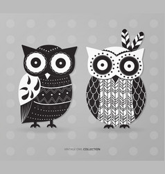 retro owl set design vector image