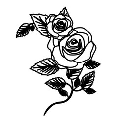 figure roses with squere petals and leaves icon vector image vector image