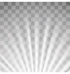 Blurred Sun Rays vector image