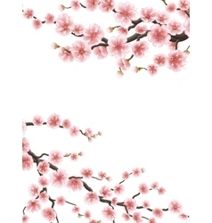 Spring background with cherry blossom EPS 10 vector image