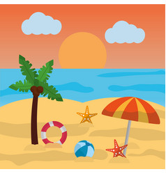 beach summer palm umbrella ball starfish sun cloud vector image