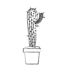 Blurred silhouette cactus with small branch in pot vector