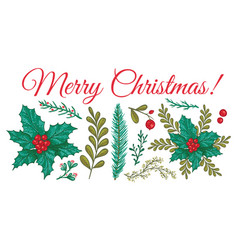 christmas plants template vector image