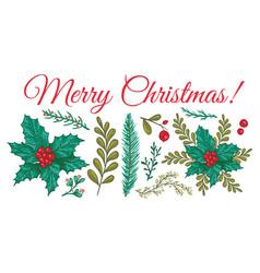 Christmas plants template vector