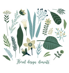 floral design elements leaves flowers vector image