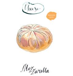 fresh white mozzarella cheese vector image