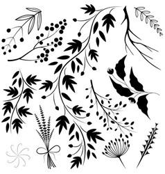 twigs vector image