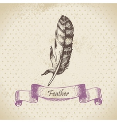 Vintage background with feather hand drawn vector image vector image