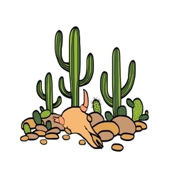 Cactus cow scull and stones vector