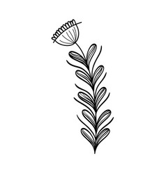 Rusctic plant branches with leaves and flower vector