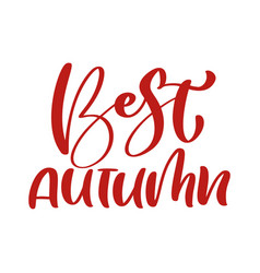 best autumn red calligraphy text hand vector image