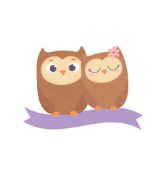 happy valentines day cute couple owl on ribbon vector image
