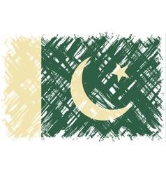Pakistani grunge flag vector
