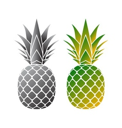 pineapple icons set vector image