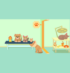 veterinary clinic horizontal banner cartoon style vector image