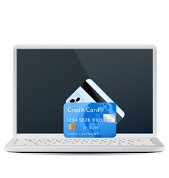 modern laptop with bank cards vector image