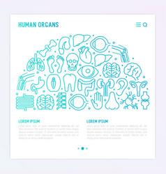 Human internal organs concept in half circle vector