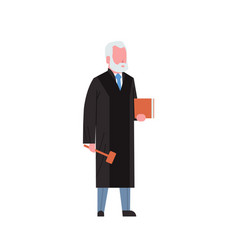 Judge man court worker in judicial robe holding vector