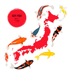 Koi fish and japan map vector