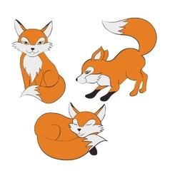 Set foxes pose vector image