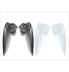 white and black wings vector image