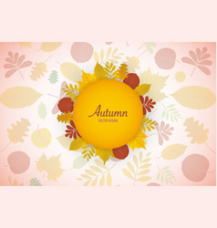 autumn leaves floral background vector image