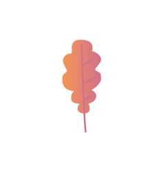 autumn oak leaf - bright vector image